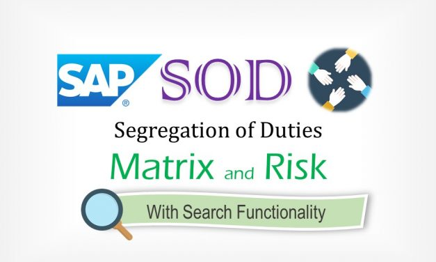 SAP Segregation of Duties (SOD) Matrix with Risk
