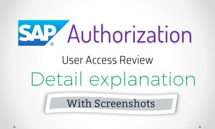 SAP User Authorization Audit and Explanation